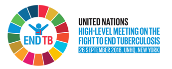 UN General Assembly High-Level Meeting on TB